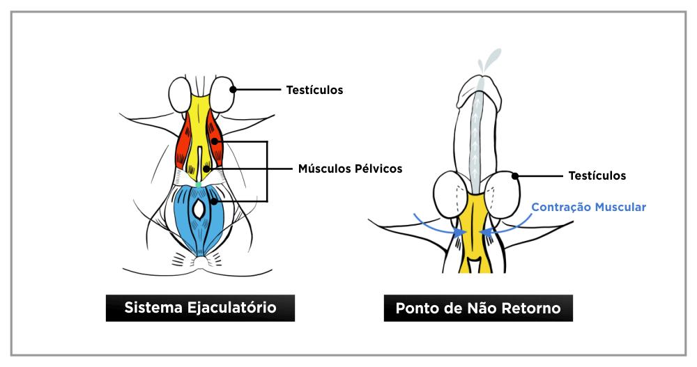 Metodo destruindo a ejaculação precoce funciona 11